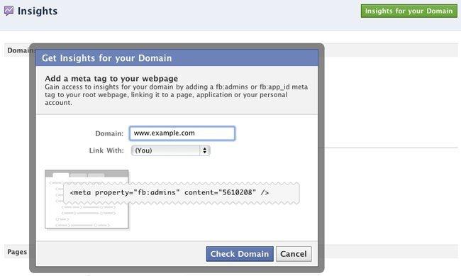 Facebook Analitik - Meta Etiketi