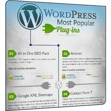 En popüler 30 WordPress eklentisi