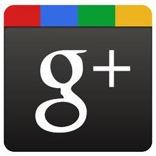 Google Plus artık profilinizin kaç kez görüntülendiğini gösteriyor
