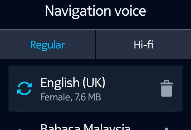 voice_download