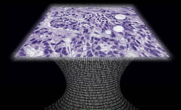 lenssiz mikroskop