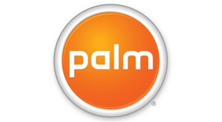 palm-featured