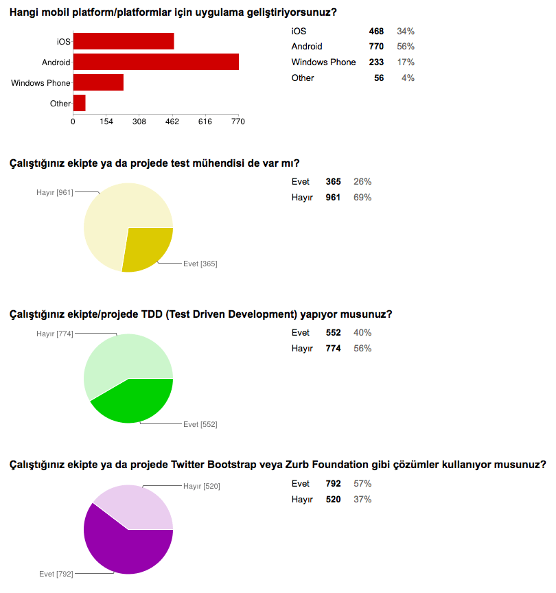 yazilim-anketi-diger-detaylar-1
