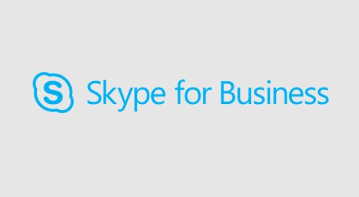 Skype for Business Turkce