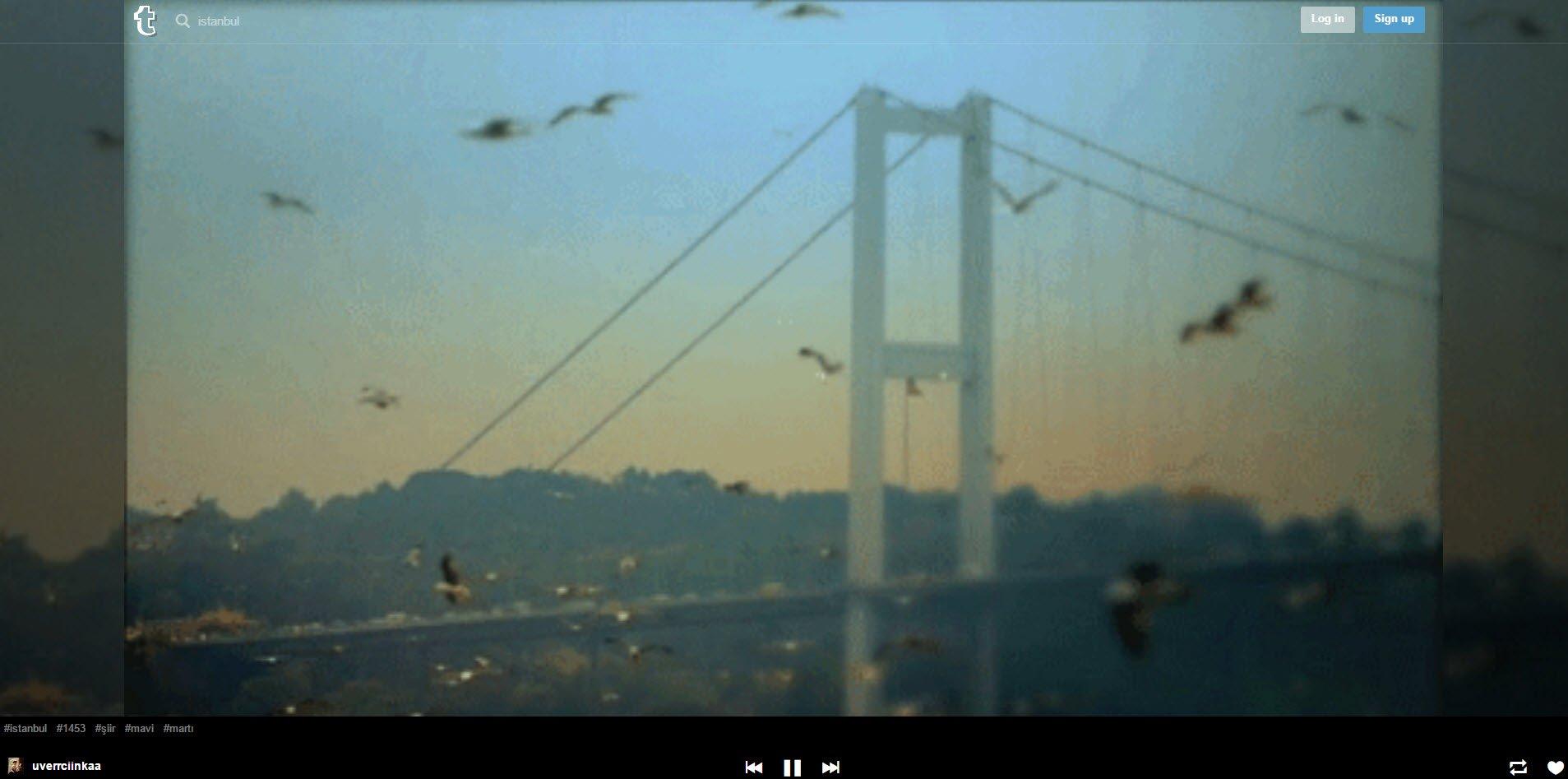 tumblr-tv-istanbul-search