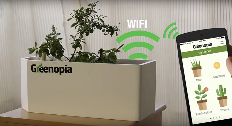 Greenopia-smart-flower-pot