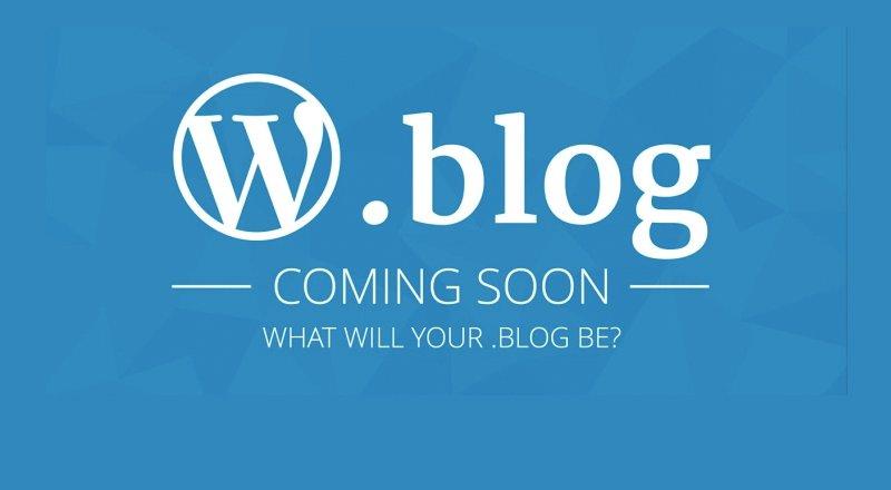 .blog uzantılı alan adı almak bu yıl sonunda mümkün olacak!
