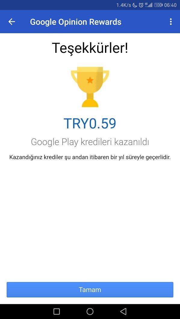 Google Ödüllü Anketler