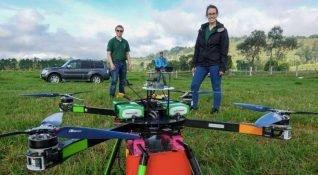 Kaybolan ormanları geri getirmek için iki drone yeter mi?