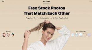 Ücretsiz, yüksek çözünürlüklü stok fotoğraf platformu: Moose