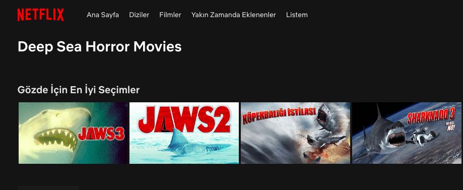 Netflixin Gizli Kalmış Film Kategorilerine Kolay Erişim Netflix